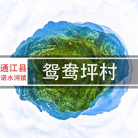 鸳鸯坪村720VR