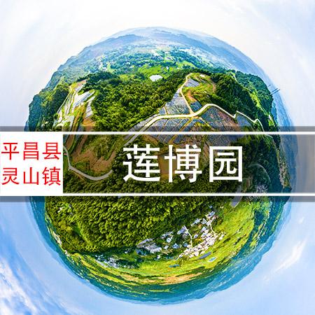巴灵台莲博园720VR