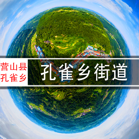 孔雀乡街道720VR全景